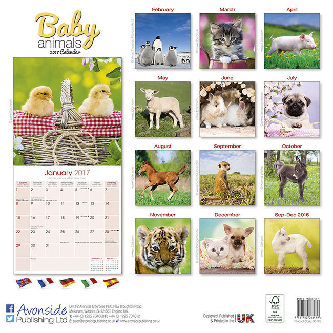 Calendrier b b s animaux 2017 - Calendrier chinois bebe 2017 ...