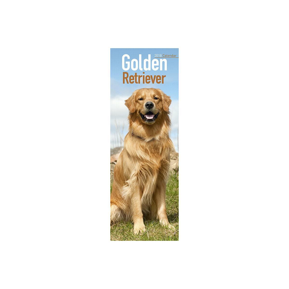 Calendrier 2018 Golden retriever