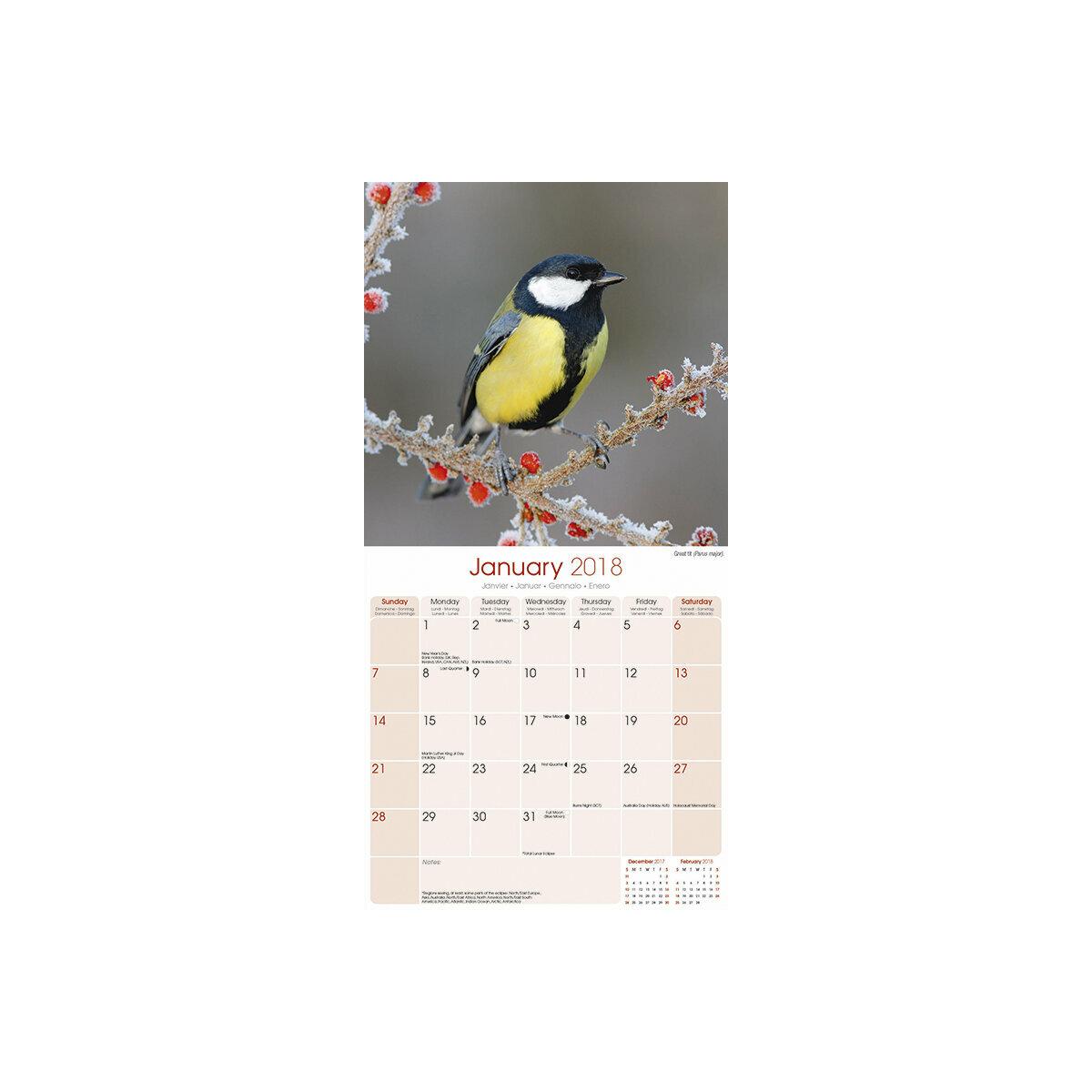 Calendrier 2018 oiseaux du jardin for Calendrier du jardin