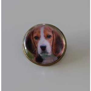 Bijoux broche fantaisie photo Beagle - cabochon rond verre