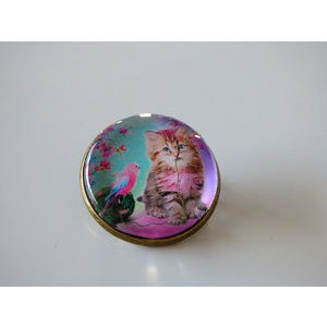 Bijoux broche fantaisie photo chat tigré perruche - cabochon rond verre