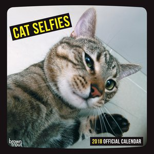 Calendrier 2018 chat selfie