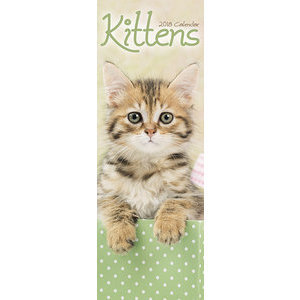 Calendrier 2018 Chatons slim