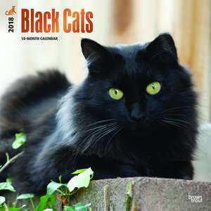 Calendrier 2018 chats noirs