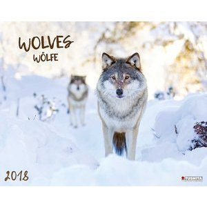 Maxi Calendrier 2018 Loup Grand Format