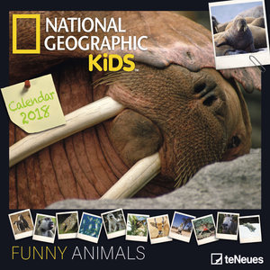 Calendrier 2018 National Geographic Animaux rigolo