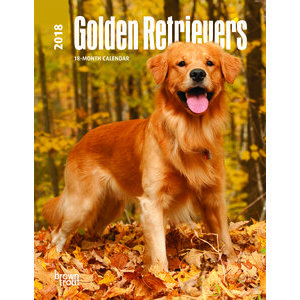 AGENDA GOLDEN RETRIEVER 2018