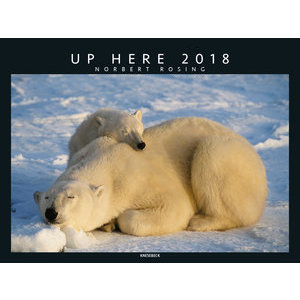 Maxi Calendrier 2018 Animaux polaire