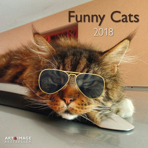Calendrier 2018 Chats funny avec poster offert