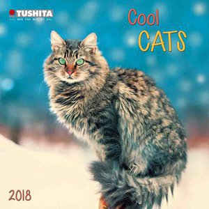 Mini calendrier 2018 Chat cool