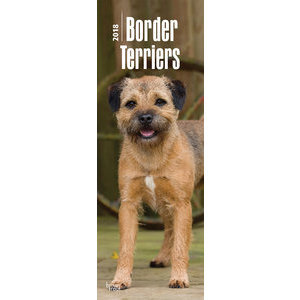 Calendrier 2018 Border terrier slim (bt)