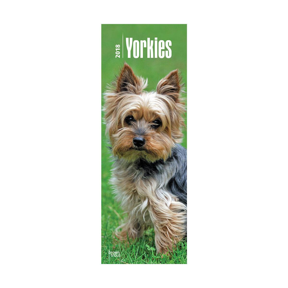 calendrier 2018 yorkshire terrier slim bt. Black Bedroom Furniture Sets. Home Design Ideas