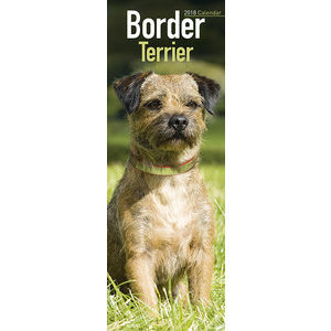 Calendrier 2018 Border terrier slim