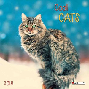 Calendrier 2018 Chat cool