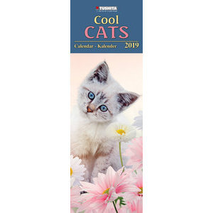 Calendrier 2019 Chat cool Maxi slim
