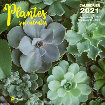 Calendrier 2021 Plantes succulentes