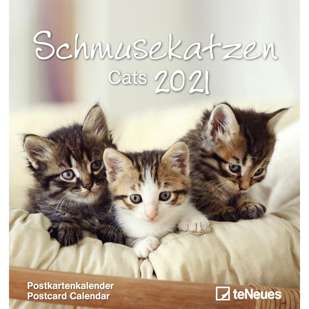 Calendrier 2021 carte postale détachable CHAT