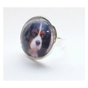 Bijoux bague fantaisie photo Cavalier king charles tricolore - cabochon rond verre