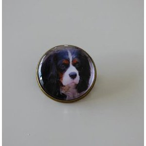 Bijoux broche fantaisie photo Cavalier king charles tricolore - cabochon rond verre