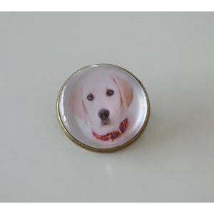 Bijoux broche fantaisie photo Labrador - cabochon rond verre