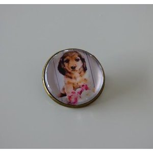 Bijoux broche fantaisie photo Teckel - cabochon rond verre