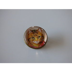 Bijoux broche fantaisie photo chat tigré collier rouge - cabochon rond verre