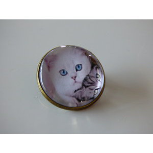 Bijoux broche fantaisie photo duo chatons - cabochon rond verre