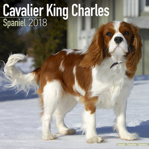 Calendrier 2018 Cavalier king charles