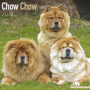 Calendrier 2018 Chow chow