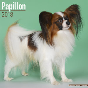 Calendrier 2018 Epagneul papillon