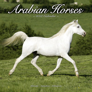 Calendrier 2018 Chevaux arabes