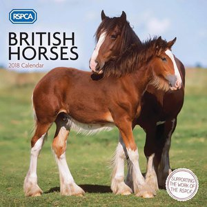 Calendrier 2018 Chevaux anglais