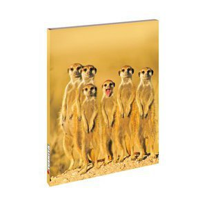 Carnet de note Suricate - Notebook