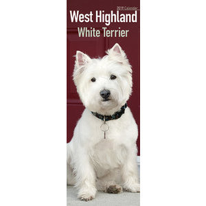 Calendrier 2019 West highland white terrier slim