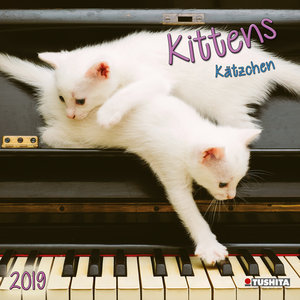 Calendrier 2019 Chaton nature