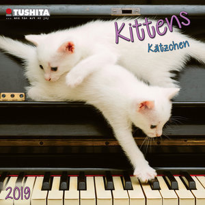 Mini calendrier 2019 Chaton