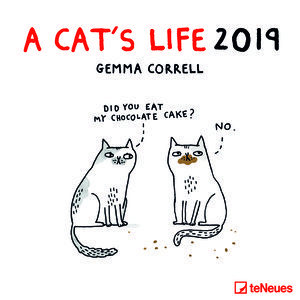 Calendrier 2019 BD humour chat - a cat's life