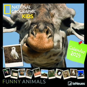 Calendrier 2019 National Geographic Animaux rigolo
