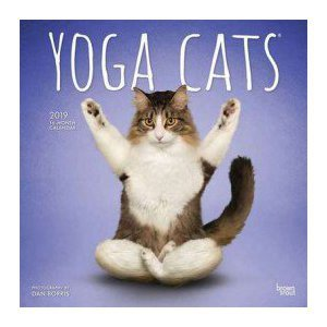 Calendrier 2019 chats yoga
