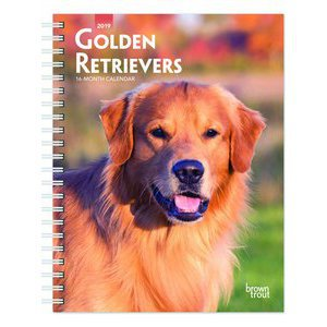 Agenda Golden retriever 2019