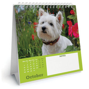 CALENDRIER 2019 CHEVALET WEST HIGHLAND WHITE TERRIER