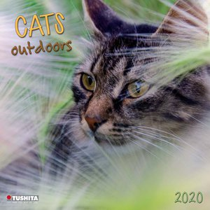 Calendrier 2020 Chat nature