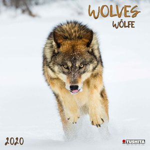 Calendrier 2020 Loup