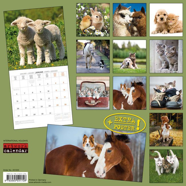 Calendrier Animaux.Calendrier 2020 Animaux Avec Poster Offert