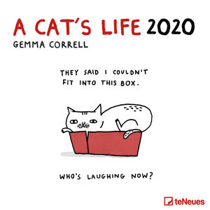 Calendrier 2020 BD humour chat - a cat's life