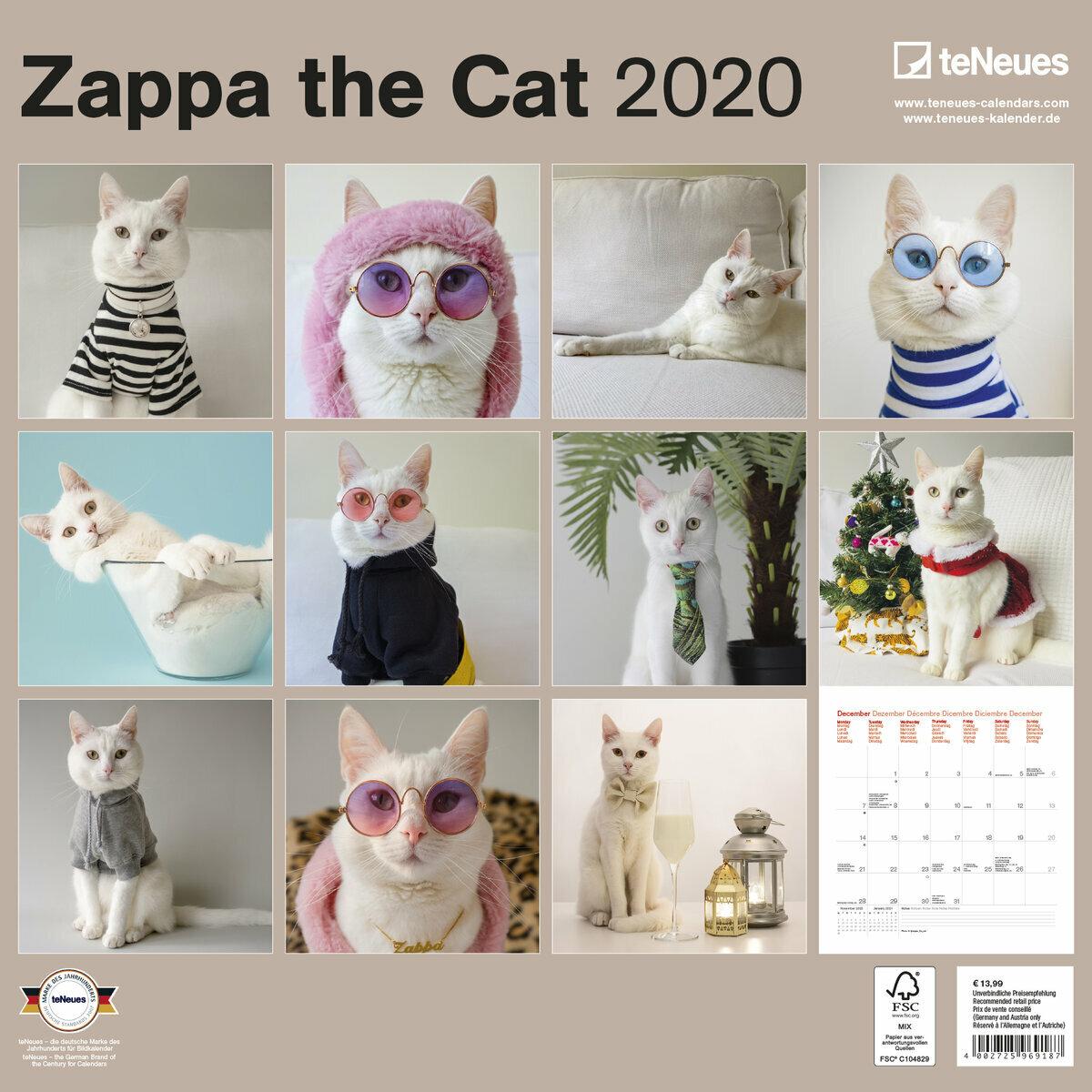 Modele De Calendrier 2020.Calendrier 2020 Chat Zappa Top Model