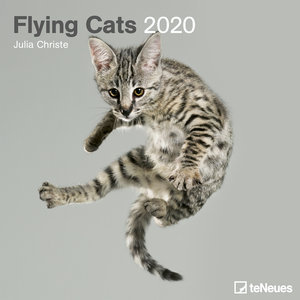 Calendrier 2020 Chat volant
