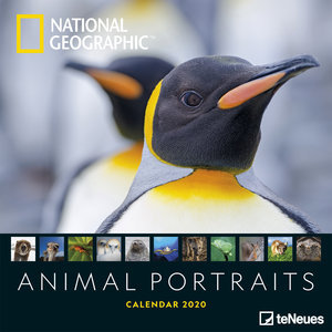 Calendrier 2020 National Geographic Portrait Animaux