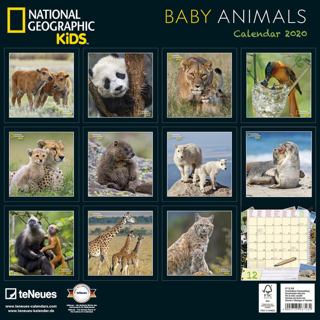 Calendrier 2020 Animaux.Calendrier 2020 National Geographic Bebe Animaux
