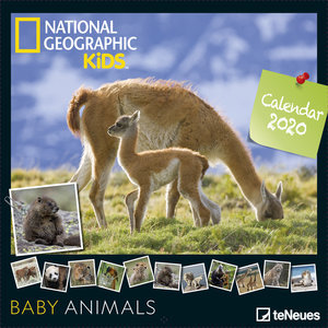 Calendrier 2020 National Geographic bébé animaux